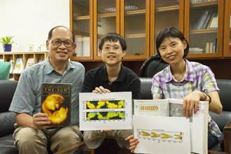 中大太空所改寫教科書 太陽磁場生成與演變新發現