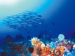 陸探測深海 發現結核病新藥