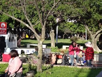 催生兒童特色公園 埔里媽媽舉辦共識會議