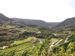 新北、澎湖農村交流 分享秋季嵩山社區之美