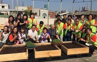 屋頂閒置空間變農園 都市農耕低碳又健康