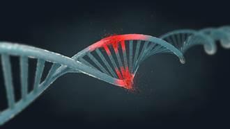 遺傳疾病有救了?! 美科學家發表突破性DNA編輯技術