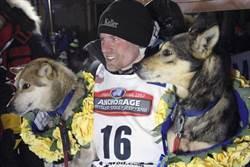 狗狗也吃禁藥 阿拉斯加雪橇賽舞弊