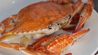 樂天皇朝推新加坡辣蟹小籠包  炒飯生煎包都很Seafood