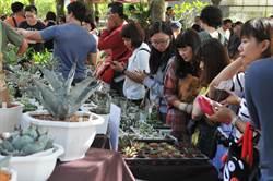 埔里首辦多肉植物市集 達人分享養肉經