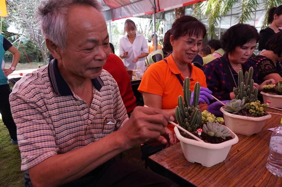 社區長輩動手將多肉植物換盆移植,有人怕刺傷還全程戴手套。(王文吉攝)
