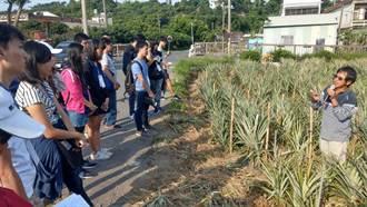 高雄大學師生造訪大樹區龍目社區見習鳳梨產業
