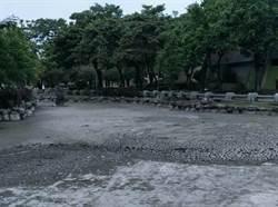 中市北屯兒童公園水池清淤檢修 12月底完工