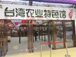 武漢台灣農業嘉年華開跑 8日免票入園