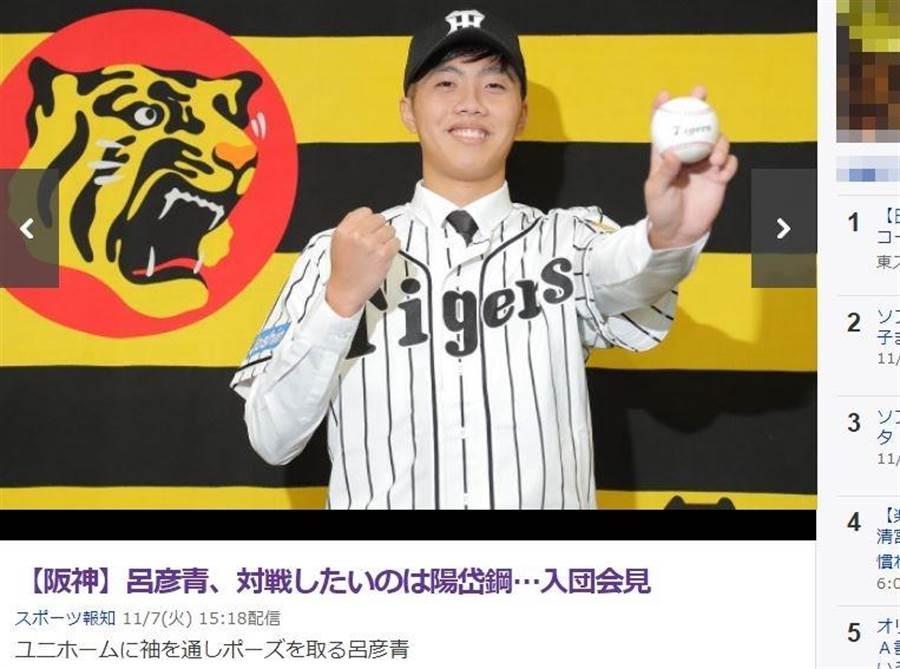 呂彥青今天正式加盟阪神,成為台灣球員第7人。(截自日本雅虎體育)