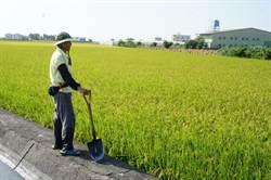 台灣沒有農業正義 議員要求雲林縣府硬起來