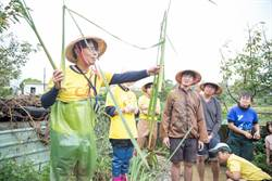 公益採筍團出團! 割筍助三芝筍農、新住民
