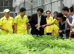 嘉大開班授課新農技 25歲到60歲都來拚轉型