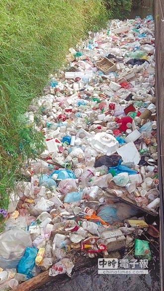 智利沿岸禁用塑膠袋