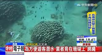 影》墾丁後壁湖珊瑚礁遭「綁繩」 遊客拉扯磨損缺角