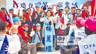 楊麗環參選桃市長黨內初選