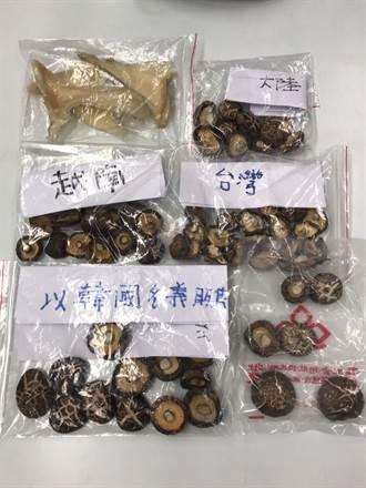 新北衛生局查獲不明香菇 6700公斤已流入市面