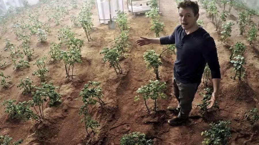 電影絕地救援當中,在火星開溫室種馬鈴薯的情節,未來很可能會實現。(圖/20世紀福斯公司)