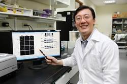 興大研究發現金屬「銥」 可作為癌症標靶藥物