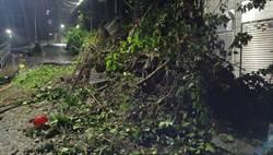 雨下不停 基隆西定路土石崩 公所緊急搶修