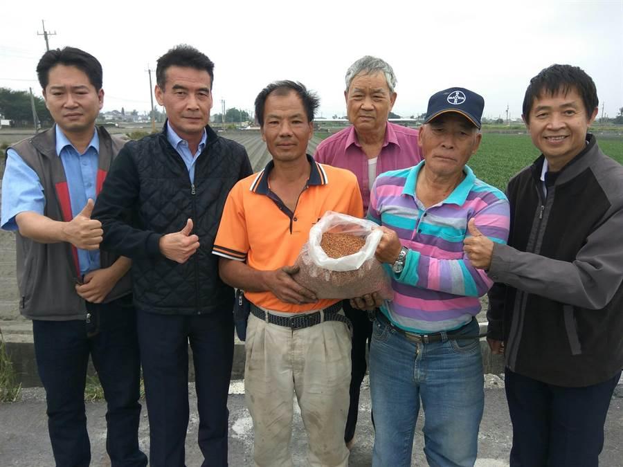 雲林縣褒忠鄉農會推廣種紅藜,總幹事吳金元(左二)說,紅藜是高經濟作物,鼓勵農民種,提高收入。(許素惠攝)