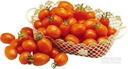 吃對蕃茄 營養加分