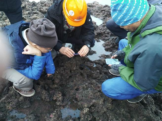 張景森(左)一行人仔細觀察藻礁。(圖/桃園在地聯盟提供)