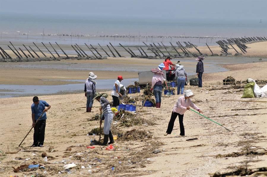 來自大陸每年高達500公噸的海漂垃圾,造成金門海域的嚴重汙染。(李金生攝)