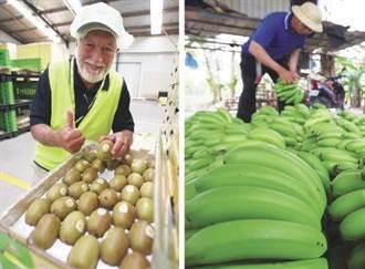 吃香蕉瘦小腹 、啃奇異果腿變細 10大水果太神奇!
