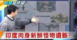 《新聞龍捲風》最後的恐龍全球現身!印度迷你遺骸「肉身仍新鮮」的怪物是…?