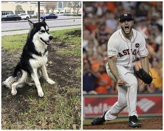 MLB》太空人曲球大師 幫走失狗狗找回主人