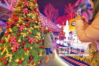 陸製聖誕樹出口比重減 價格亮晶晶
