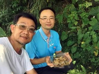 龍華科大觀光系輔導日照莊園轉型  改善龍壽社區生態環境