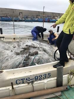 驚!竹縣漁民撈到10多枚未爆彈