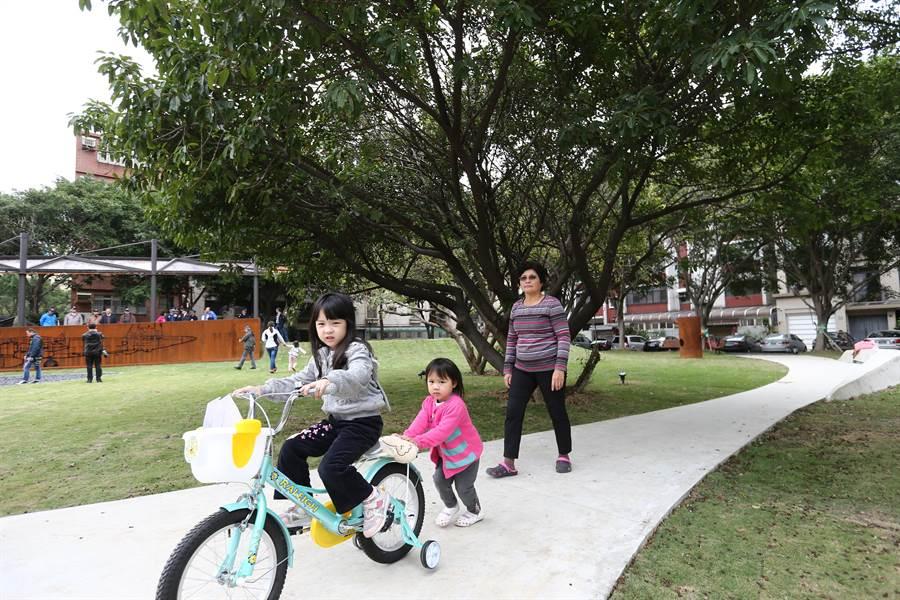新竹市東大飛行公園6日舉行啟用儀式,吸引不少民眾參觀、遊憩。(徐養齡攝)