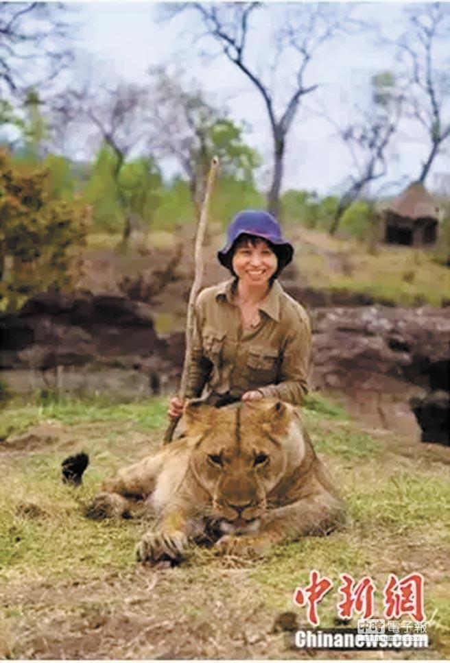 周冬臨辦個展,將收益捐給非洲Lion Alert公益機構,為當地獅子尋求庇護。(取自中新網)
