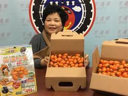 美濃直送新鮮番茄 郵政商城推優惠價
