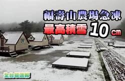 《全台最速報》福壽山農場急凍 積雪達10公分