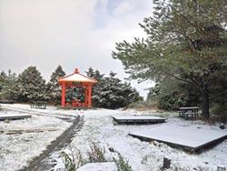 太平山、福壽山、南橫降雪