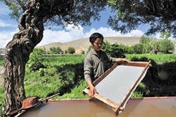 工業造紙衝擊 雪拉藏紙恐失傳