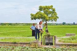 政府重工輕農 農業水權不保