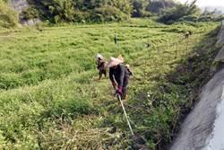 台糖土地開發 環署:非優良農地3公頃以下免環評