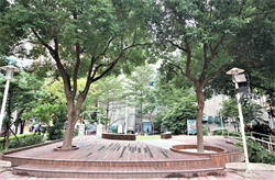 中安公園「公園不再大眾臉」音樂會因雨延期