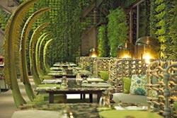 凱撒飯店全新品牌 阿樹國際旅店開幕