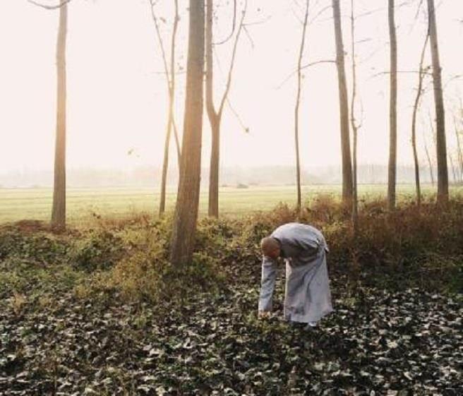 殺人犯逃亡16年,隱性埋名做僧人仍難逃法網。(翻攝自中新網)