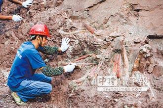 重慶雲陽恐龍公園 全球招標
