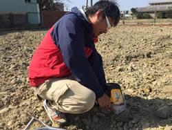 和美鎮重金屬汙染農地整治換來大小石塊 環保局要求全換掉