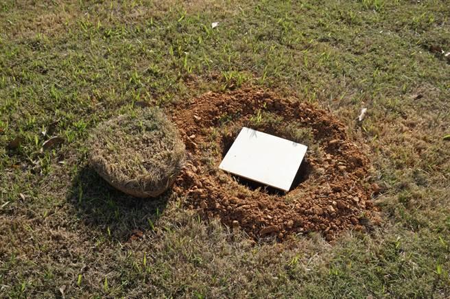 樹葬可讓土地重覆循環使用,並可美化為公園綠地。(王文吉攝)