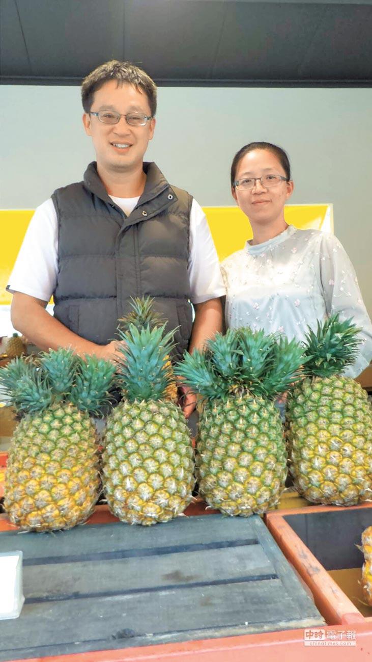 台灣鳳梨銷陸最熱門的除了「金鑽」,還有「西瓜鳳梨」,因碩大如西瓜而聞名。(特約記者林春元攝)