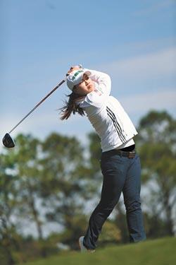 新科技高爾夫桿 擊球更穩定
